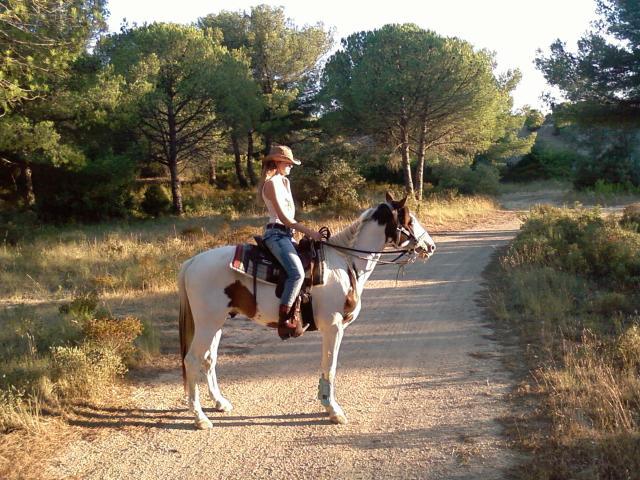 Mon cheval 170831023512540309