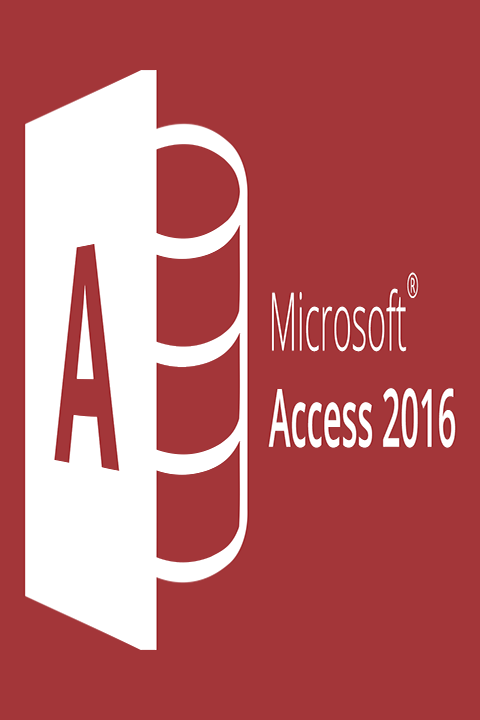 Alphorm Formation Access 2016