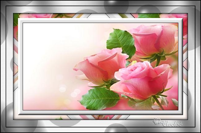 Ma rose (cadre Psp) 170903075834302700