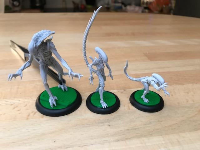 aliens VS predator 170907033135147555