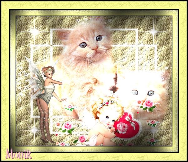 chaton ange