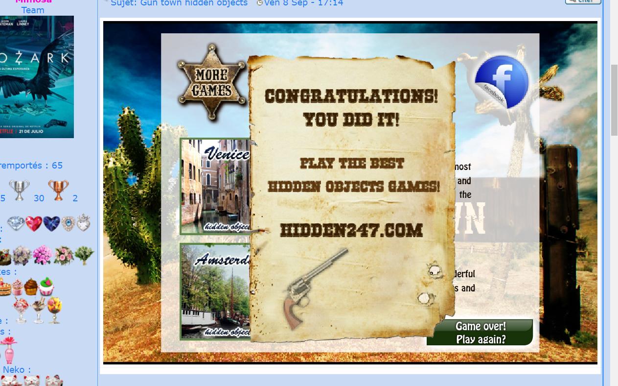 Gun town hidden objects 17091507044943149