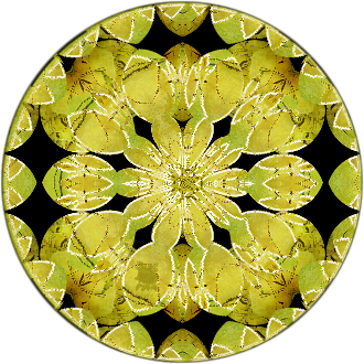 Mandala bird flower