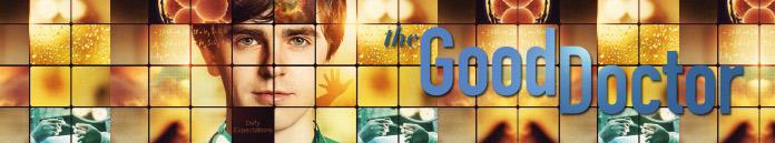 The Good Doctor Season 3 Episode 20 [S03E20]