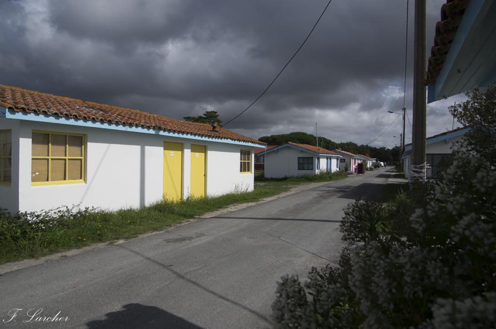 Entre Arcachon et Gironde 171006024723460361