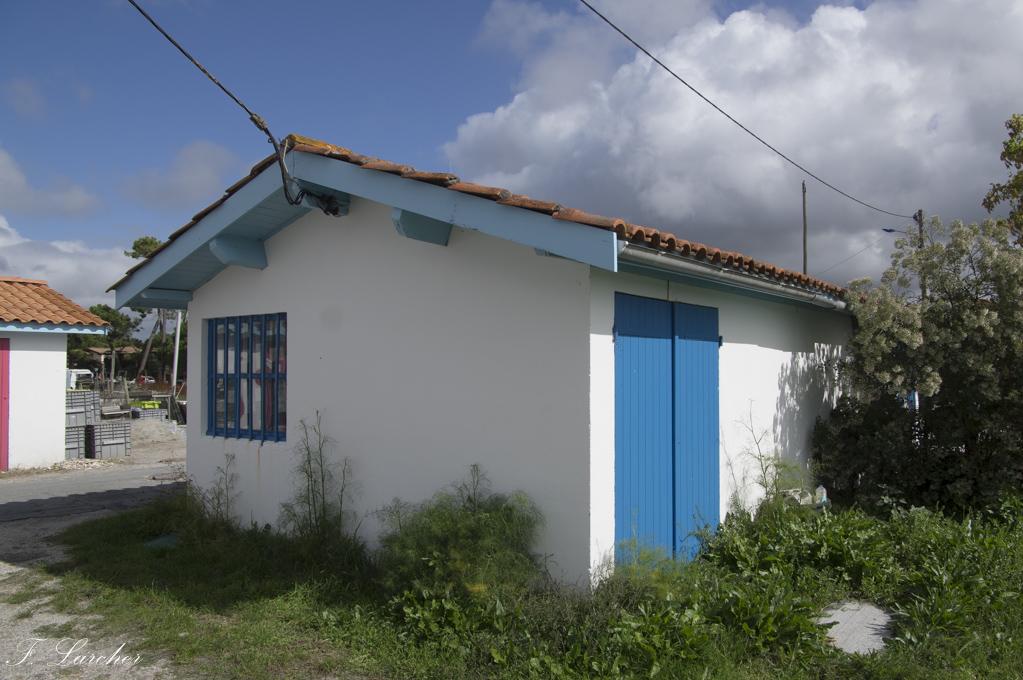 Entre Arcachon et Gironde 171006115749186917
