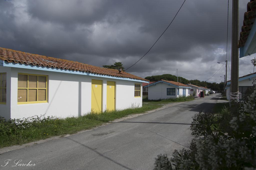Entre Arcachon et Gironde 171006115755641400