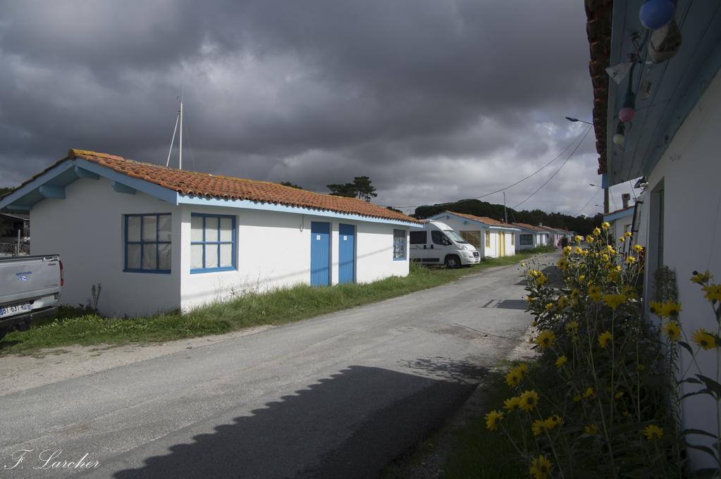 Entre Arcachon et Gironde 171006115757916063