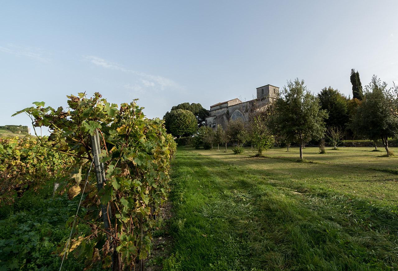 Promenade sur Bouteville. 171019095026486564
