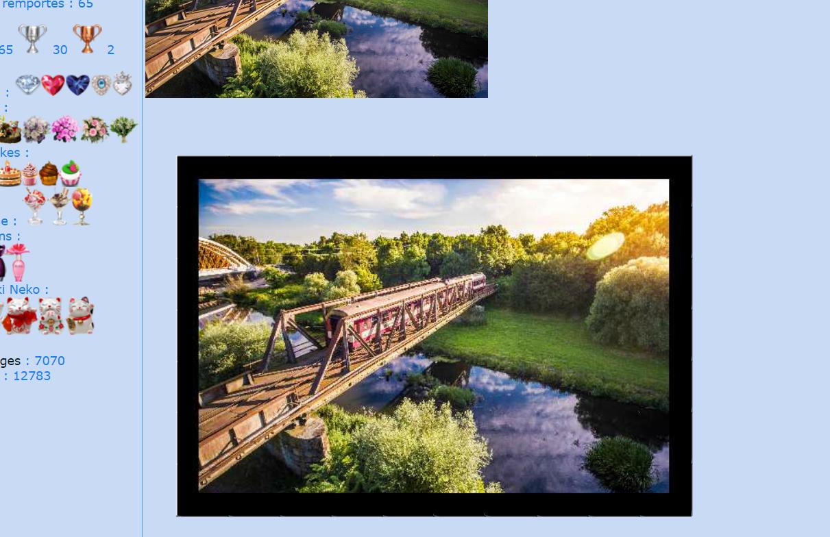 Puzzle #69 / Le vieux train sur le vieux pont 171020083927473677