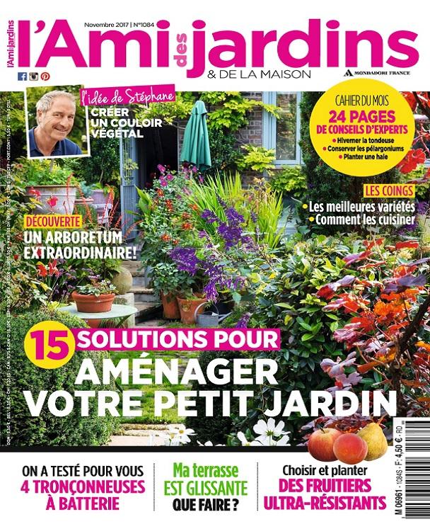 télécharger L'Ami Des Jardins N°1083 - Novembre 2017