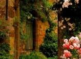 Les Ruines aux Roses