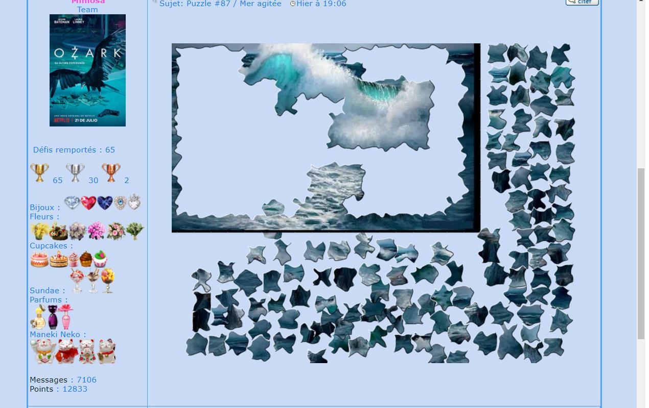 Puzzle #87 / Mer agitée 171029024753954289