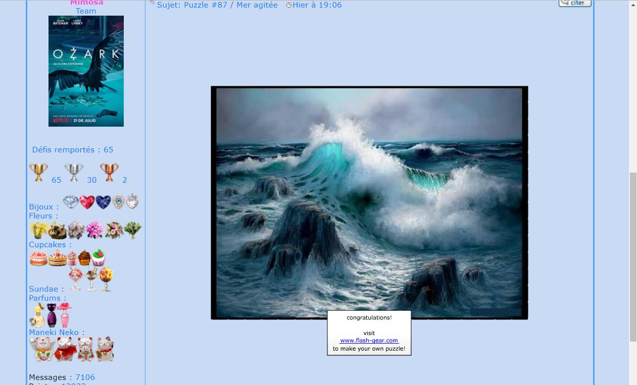 Puzzle #87 / Mer agitée 171029071300923590