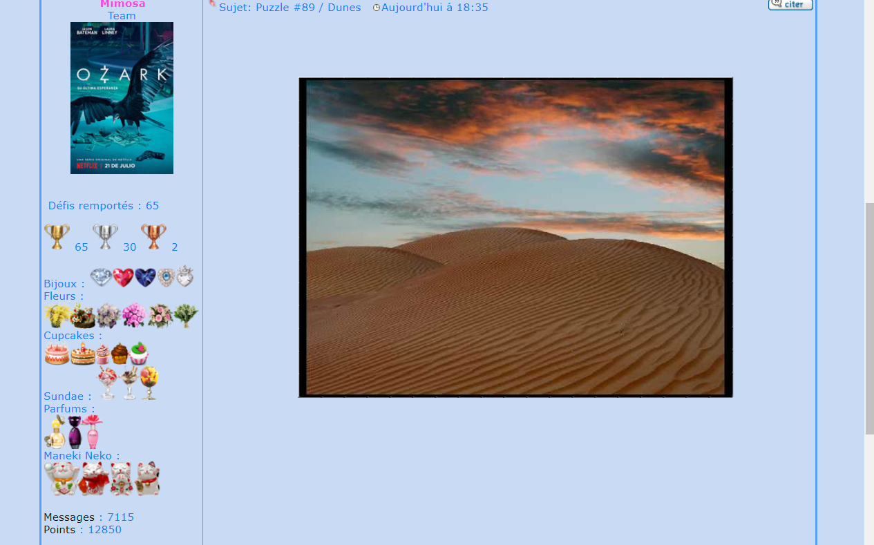 Puzzle #89 / Dunes 171031065828923878