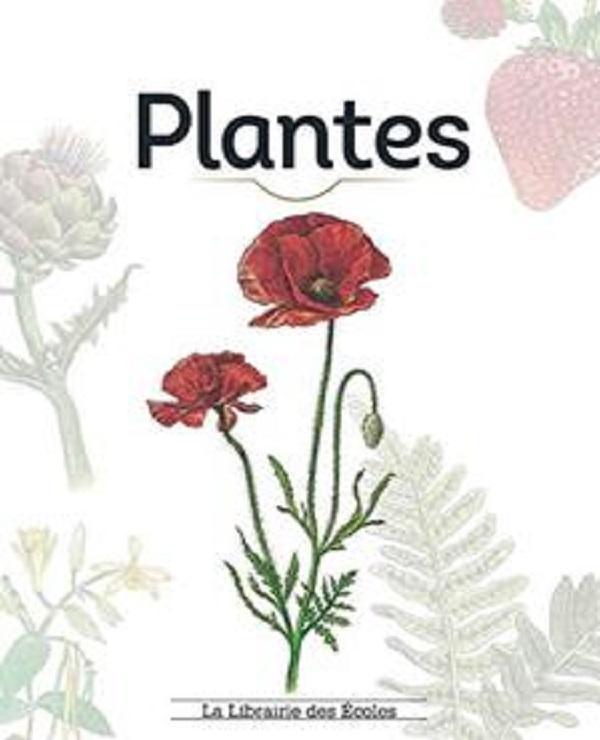 télécharger Plantes (specimen)
