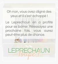 [ attrapez le leprechaun ! ] - Page 3 171204101614650250