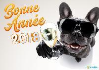 carte-bonne-annee-2018-chien-trinquons