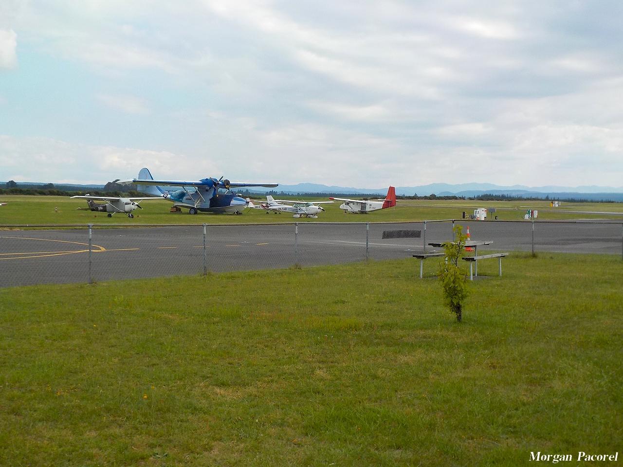 Nouvelle Zélande : spotting à Taupo et Wakatane 180103044649374310
