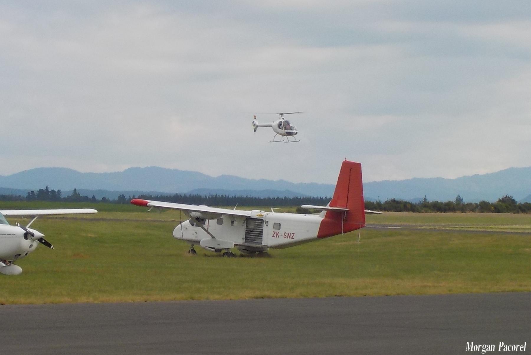 Nouvelle Zélande : spotting à Taupo et Wakatane 180103044805370567