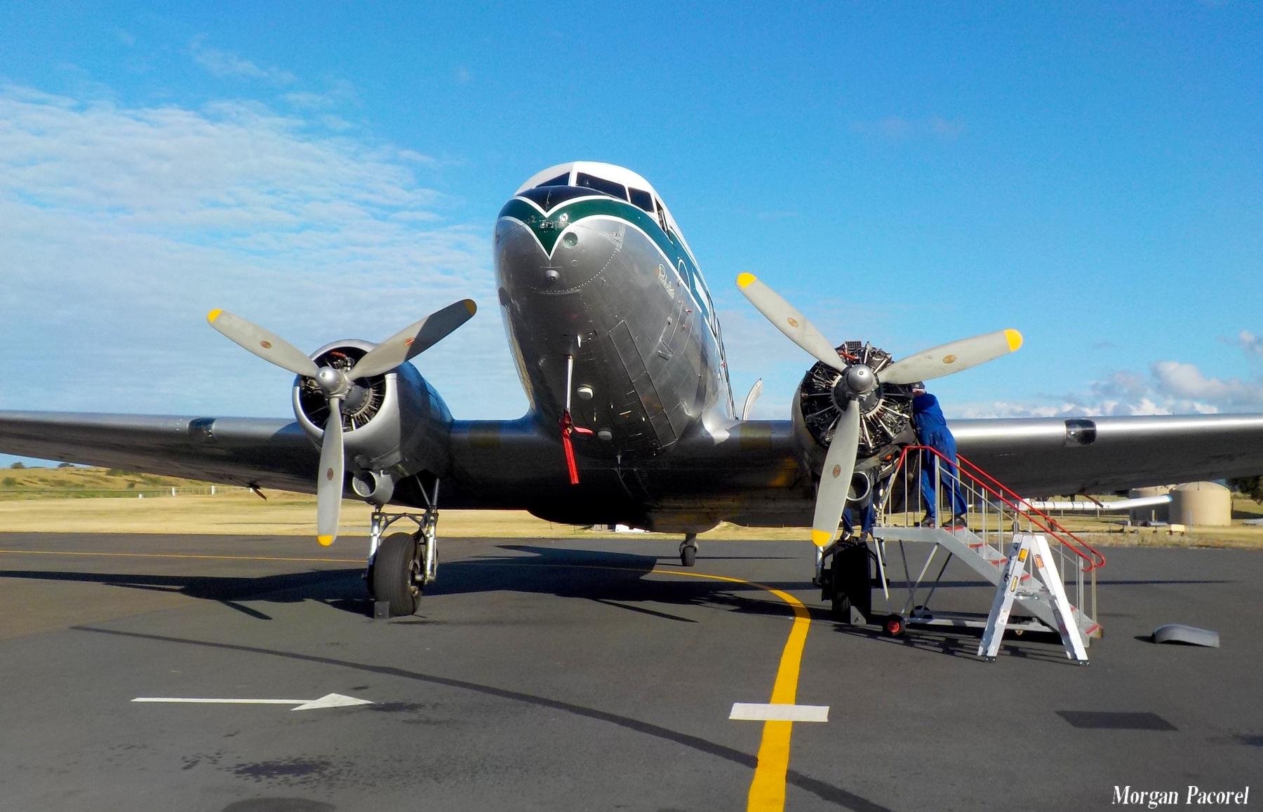 Nouvelle Zélande : spotting à Taupo et Wakatane 180103045243882638