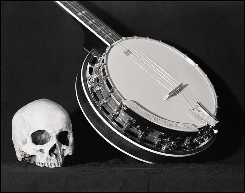 scan Banjo Crane 4x5