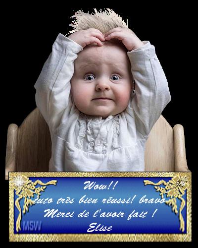 tuto carnaval 2018   (psp) 180128091559933638