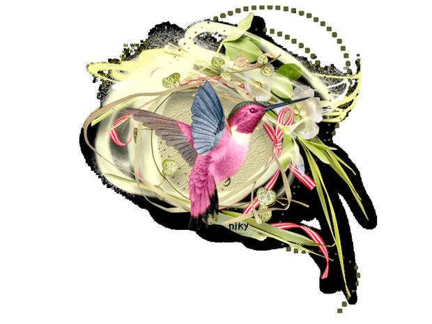 tube colibri