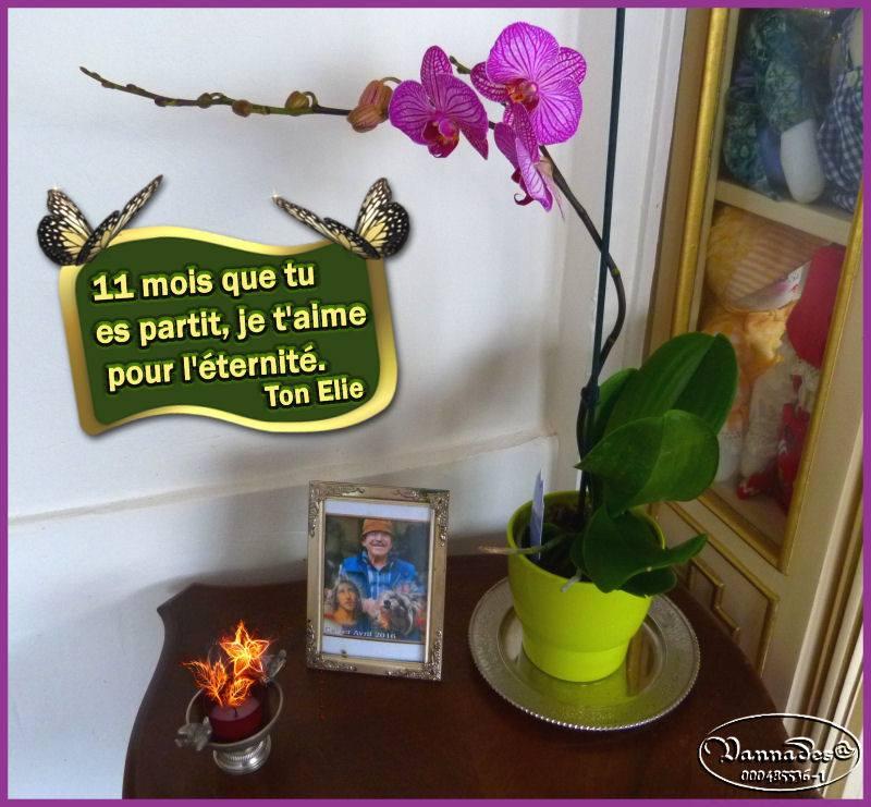 Hommage à mon Amour de ma vie ♥♥♥ 180130081839688008