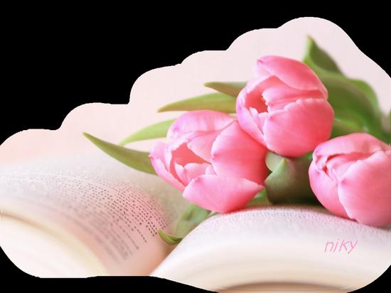 tulipe livre