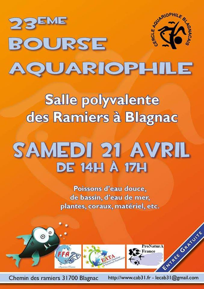 Bourse Blagnac (31) - 21 AVRIL 180131022902793727