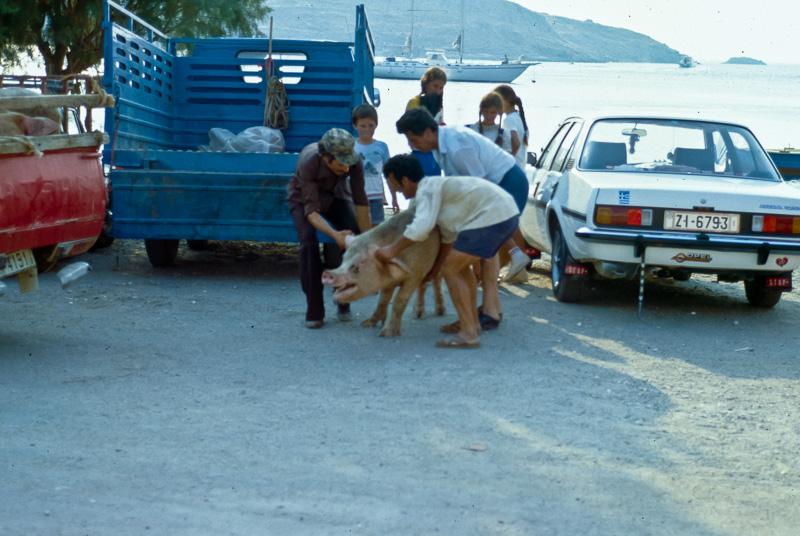 ballade en Grèce - installer des cartes 18013111062282144