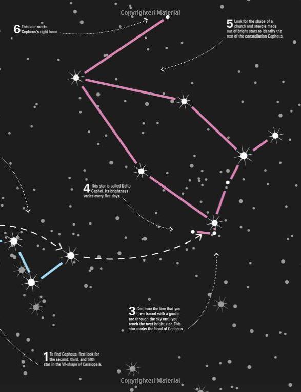 star finder debutant1