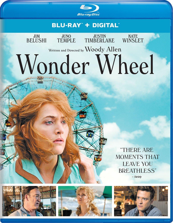 Wonder Wheel (2017) poster image