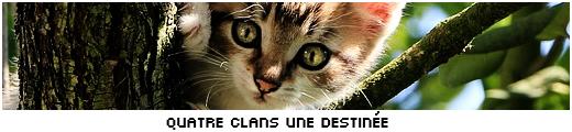 Quatre Clans, une Destinée