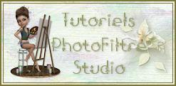 créer un forum : les tigresses du graphisme   - Portail 180313065425299341