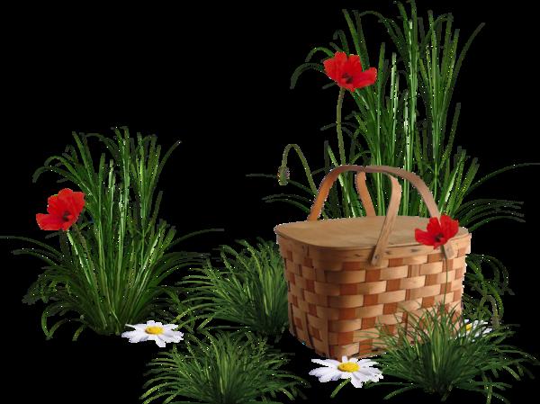 panier fleurs