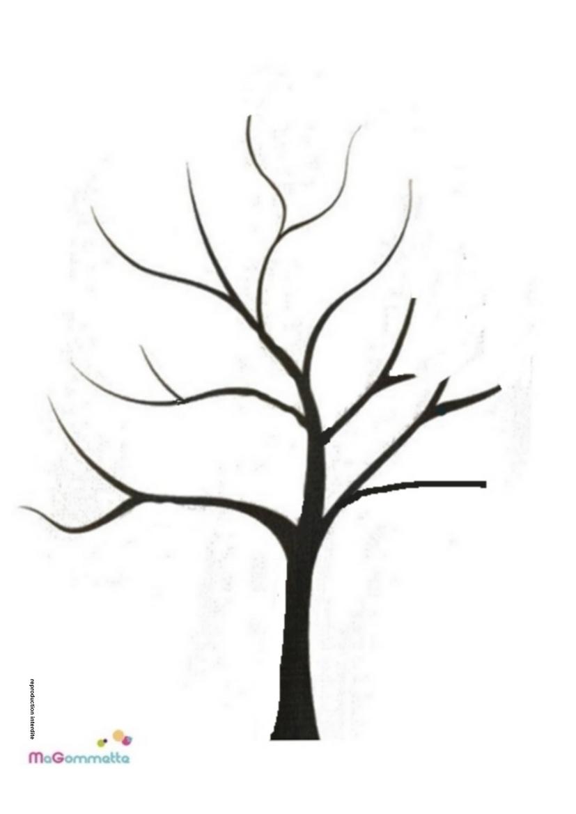 Coloriage Arbre Branche.Dessin Arbre Facile A Faire
