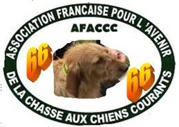 afaccc66
