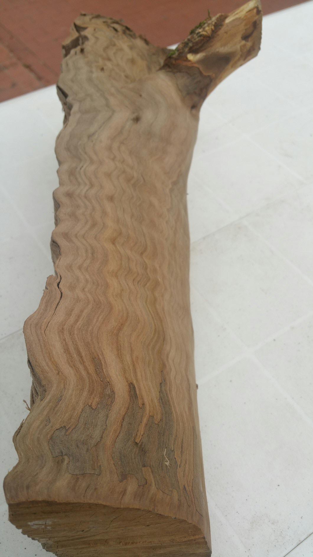 Quel est ce bois? 180404021751759619