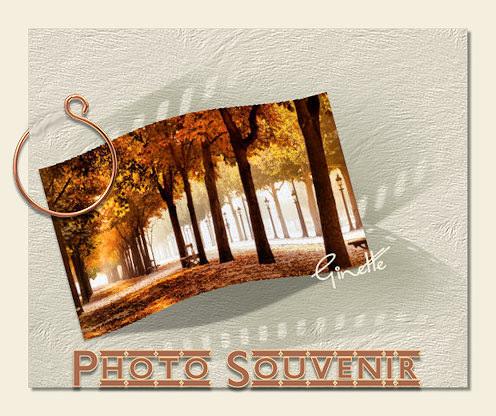 Cours PSP-37-Photo bombée 180410041349572446