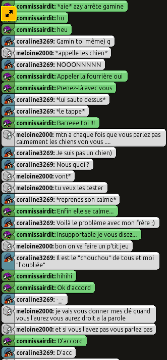 [C.H.U] Rapport d'action RP de meloine2000 180504074012646914