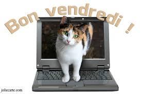 Jeu des Pseudos - Page 17 180511065957100482