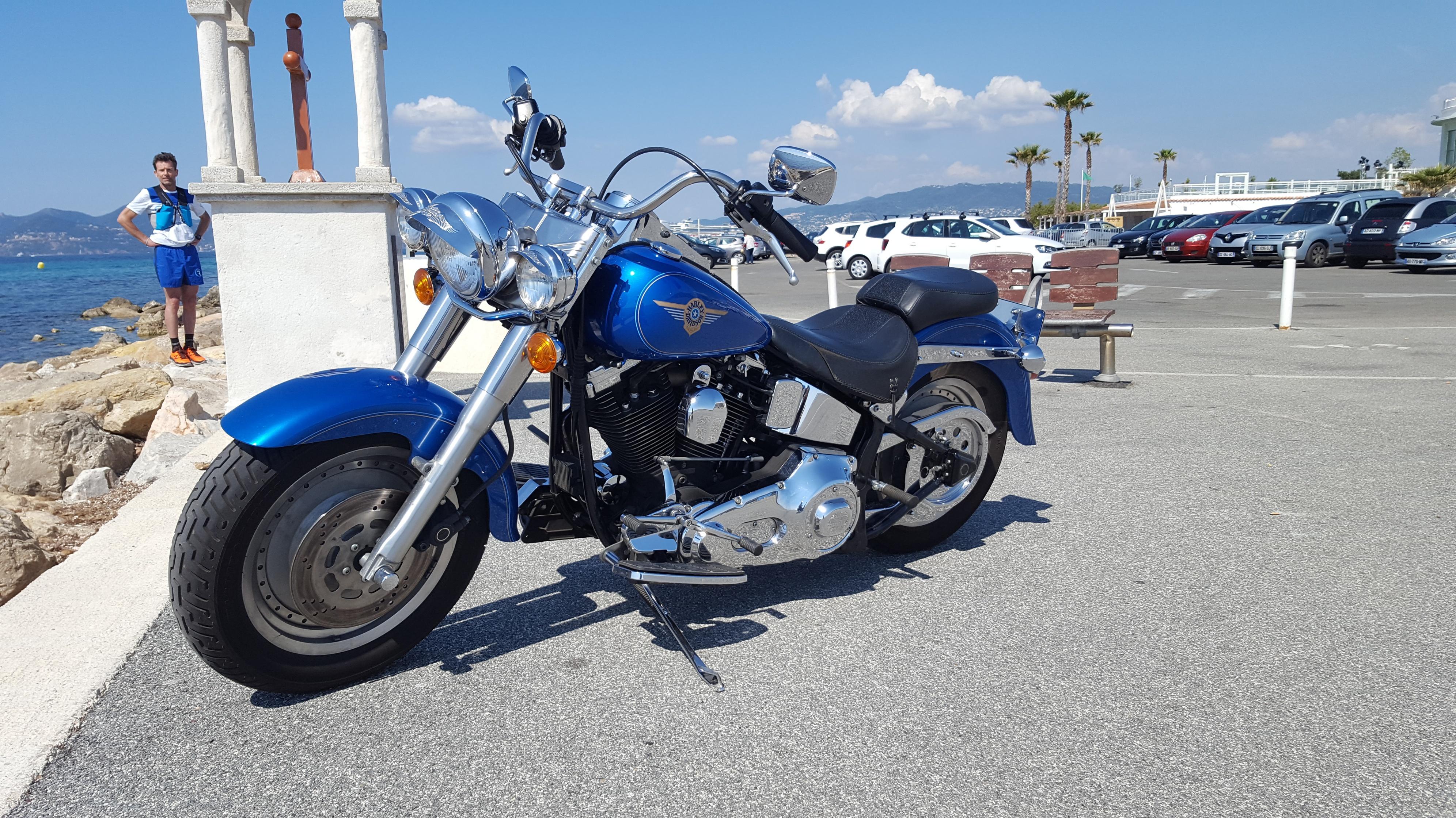 Combien de Softail sur le forum Passion-Harley - Page 13 180525072738673525