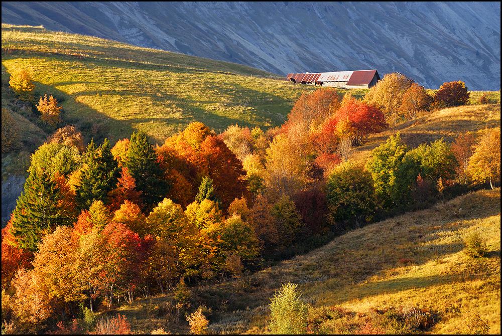 Palette d'automne 18052710343529095
