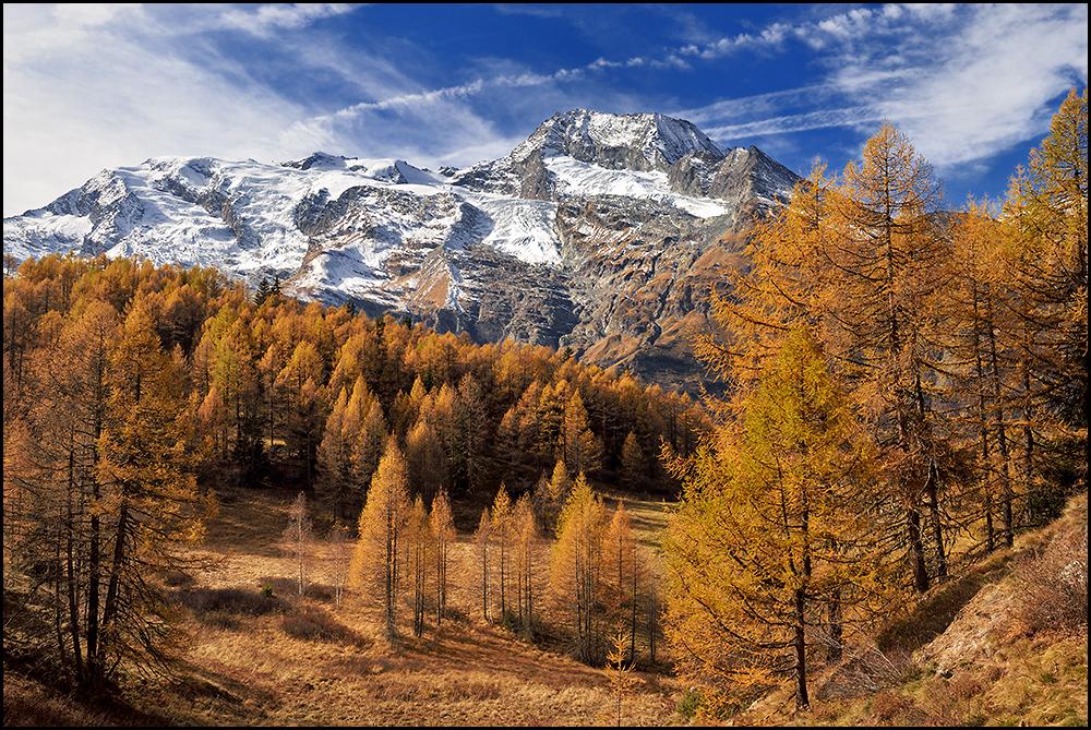 Palette d'automne 180527103505994316