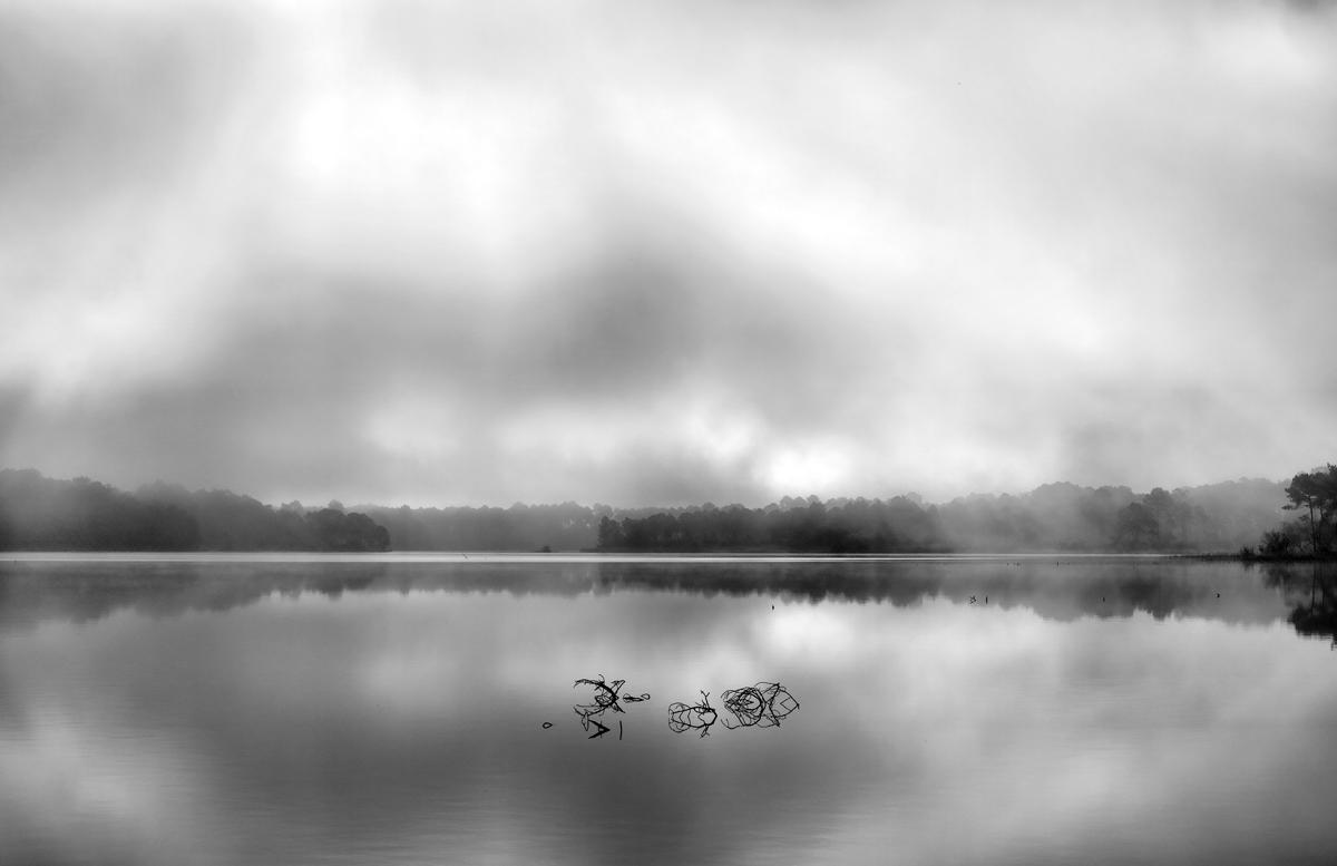 jcr paysage noir et blanc - Page 11 18060701013726082