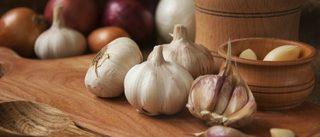 garlic-1100x471