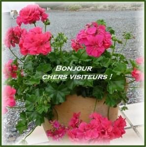 Pour nos invités - Page 25 180622031930133216