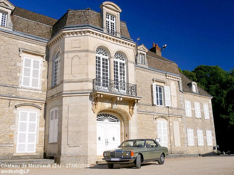 """Mon Etoile """"chardon argenté"""" - Page 4 180628091003704678"""